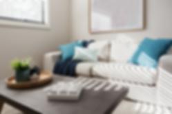 Clean Livingroom.png