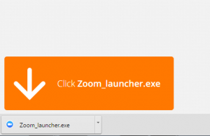Google-Chrome-Zoom-Install-300x195.png