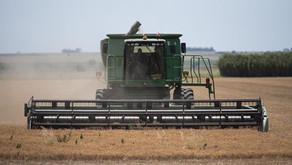 Desafío 2021: tips para mantener la competitividad en las empresas del agro