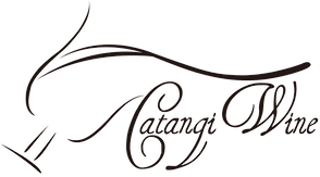 catangi logo black png.png