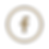 LOGO FACEBOOK PNG bronze.png