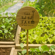 Things I've Learned at a Permaculture Farm