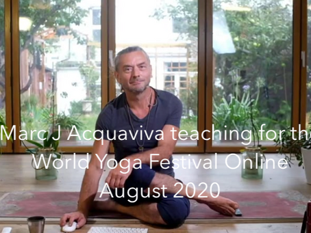 A free 1.5 hour class (for the World Yoga Festival)