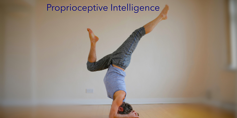 Introductory Online Workshop 1 - The Proprioceptive Intelligence Series