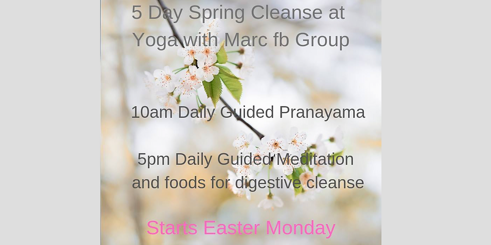 FREE! 5 day Spring Cleanse