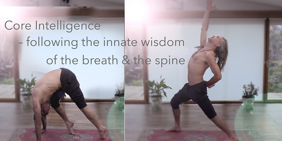 Core Intelligence Intro1 - following the innate wisdom of the breath & spine.