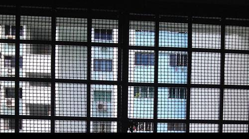 Mesh samples for windows