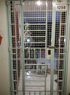 Mesh samples for gates