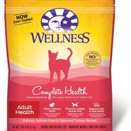Wellness Complete Health Adult Salmon
