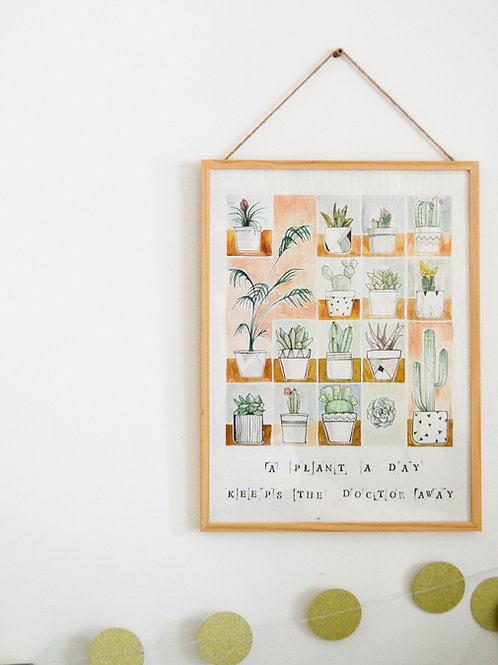 A plant a day