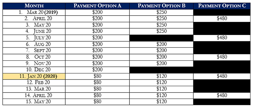 Germany Payment Plan.png
