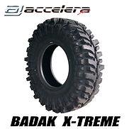 BADAK-web用1.jpg