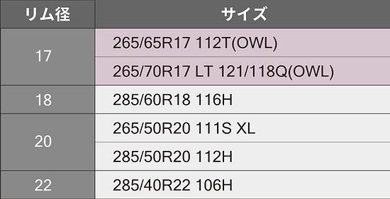サイズ表OMI.png