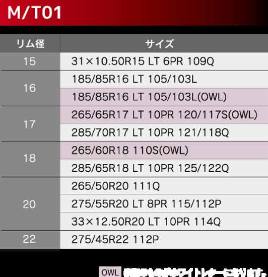 MTサイズ表.png