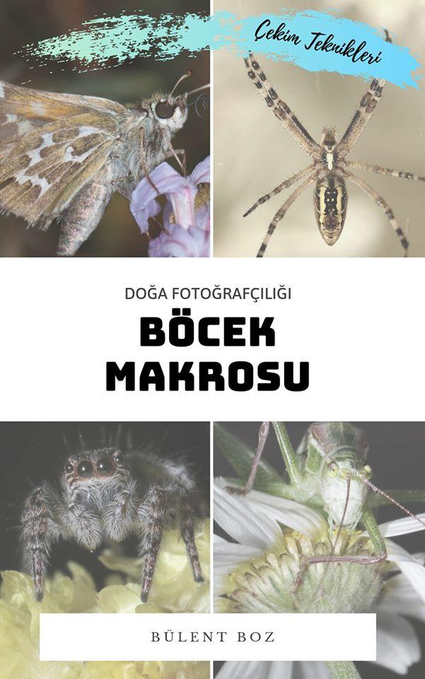 bboz_macro_kitap_ (1)