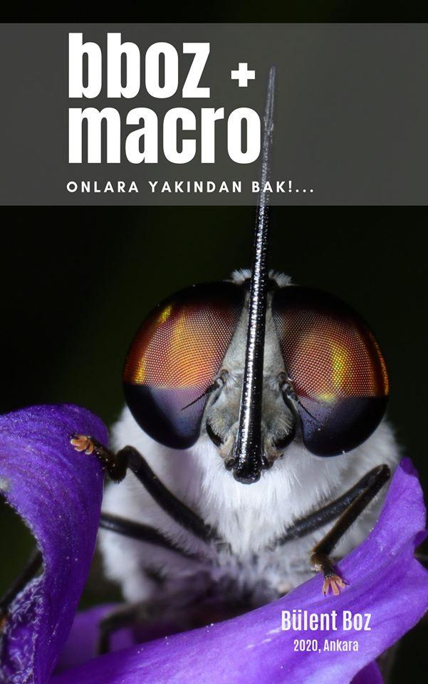 bboz_macro_kitap_ (2)