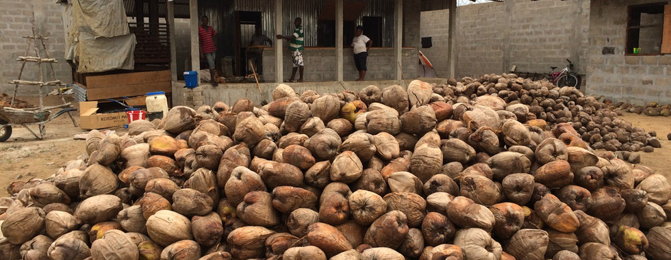 Coconut oil processing training facility