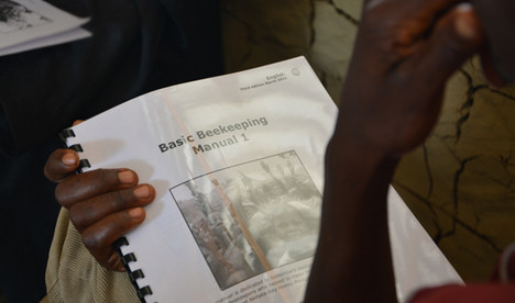 Beekeeping training manual