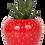 Thumbnail: Succulent X Strawberry