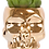 Thumbnail: Succulent X Skull