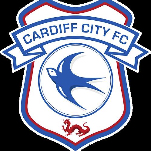 Under 18 Assistant Coach | Cardiff City Football Club | UK