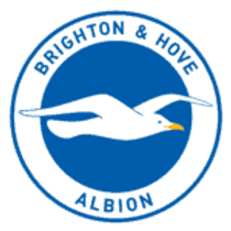 First Team Performance Physiotherapist | Brighton & Hove Albion FC | UK