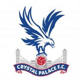 Sports Coach | Crystal Palace FC | UK