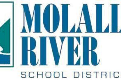 Assistant Basketball Coach | Molalla river school district |USA