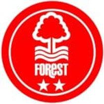 Premier League Head Coach   Nottingham Forest   UK