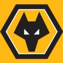 Health Activator | Wolverhampton Wanderers | UK