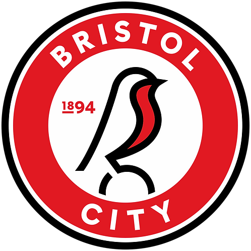 Sessional Academy Physio | Bristol Rovers FC | Championship
