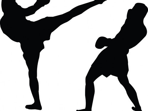 Kickboxing coach | Athens | Greece