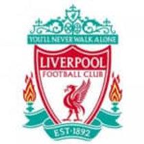 Casual Head Coach U16   Liverpool FC   UK