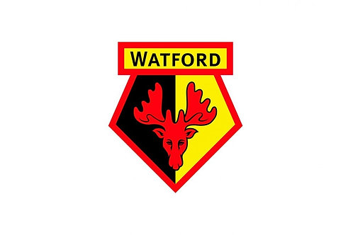 First Team Coaching Analyst Internship | Watford Football Club | UK