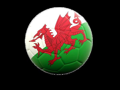 Physiotherapist | Wales Football Association | UK
