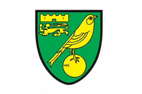 Regional  Casual Grassroots Scout | Norwich City FC | UK
