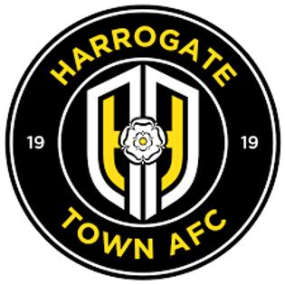 Academy Physiotherapist | Harrogate Town Academy | UK