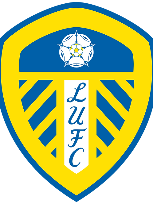 Senior Academy Analyst | Leeds United | Premier League