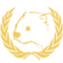 United Nations Society (UNSOC)