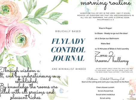 FlyLady Control Journal Printables