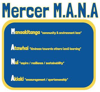 Copy of Mercer Mana.jpg