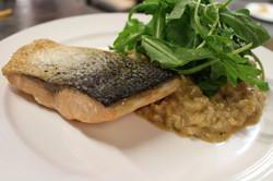 pavé de saumon et risotto