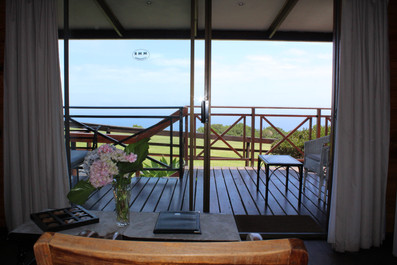 View to outside Bedroom.JPG