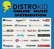 distrokid distribution 2.jpg