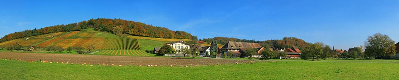 Rudolfingen von Süden