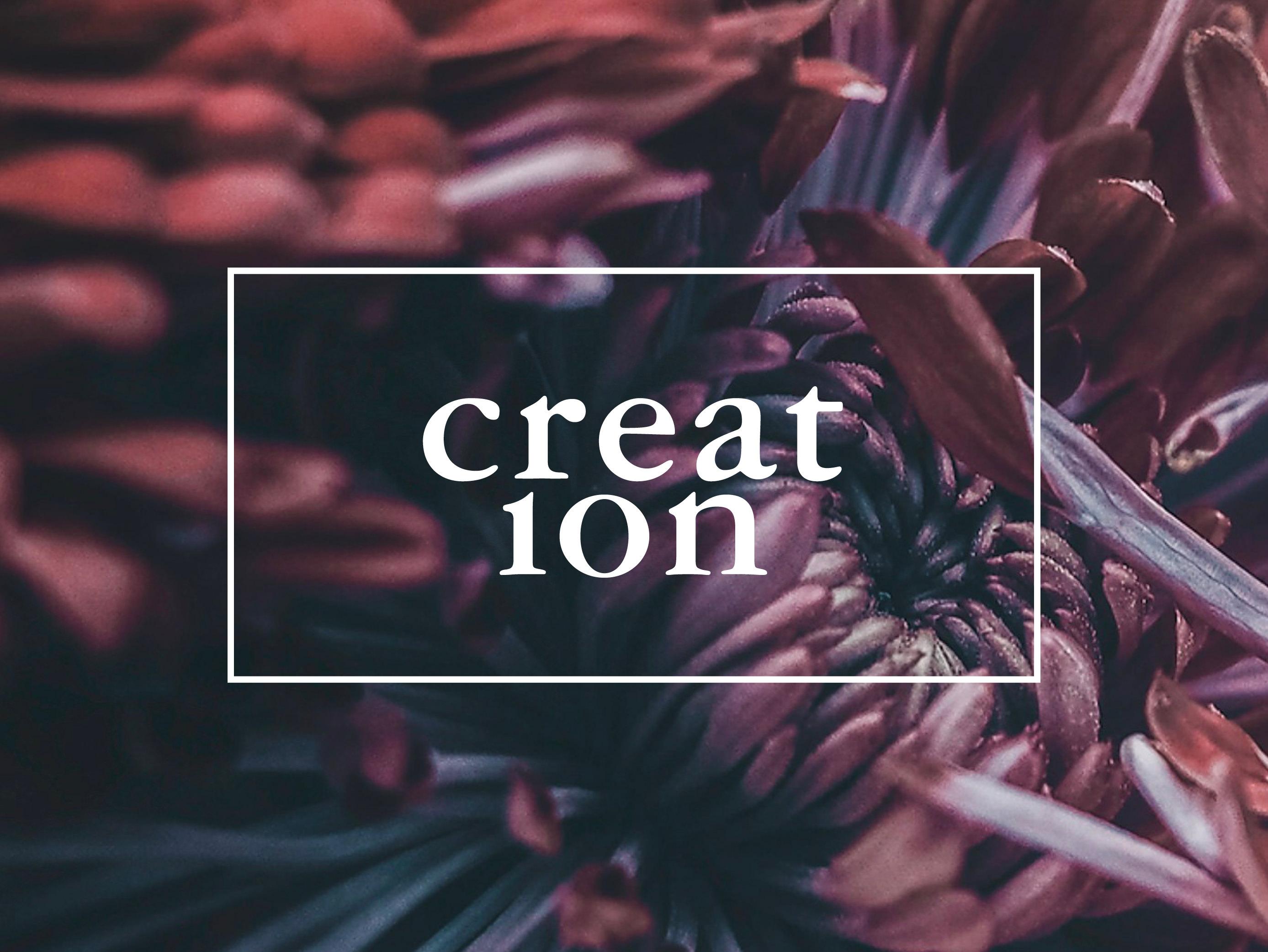 GDGB Creation