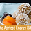Thumbnail: Apricot Medjool Dates