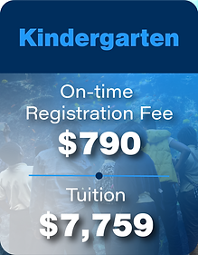 Tuition & Reg fees-03.png