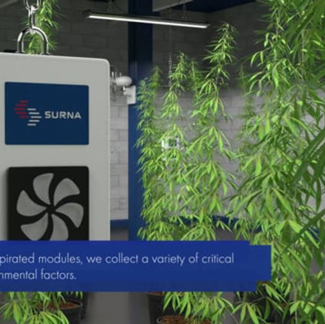 Surna Automation | Animation