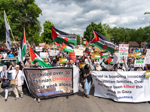 [Photos] Rise Up MN: Palestine is Calling